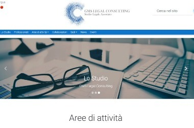 GMS Legal Consulting